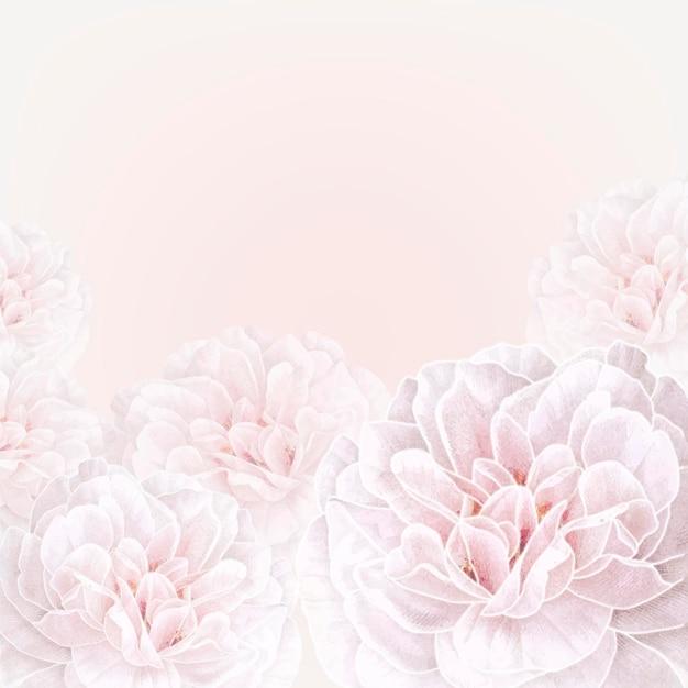 Vetor de modelo de anúncios sociais com moldura de rosa branca