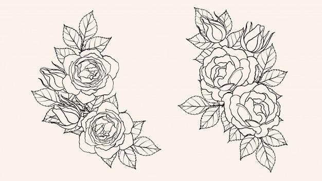 Vetor de ornamento rosa à mão de desenho