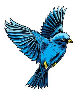 Vetor de pássaro azul