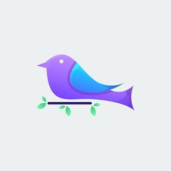 Vetor de pássaro colorido