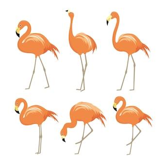 Vetor de personagem de desenho animado de pássaro animal rosa flamingo