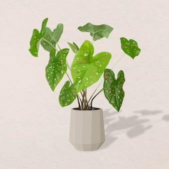 Vetor de planta em vaso, planta máscara africana em vaso de decoração de interiores para casa