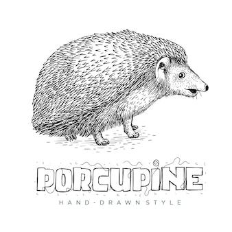 Vetor de porco-espinho bonito olhando. ilustração animal desenhada à mão