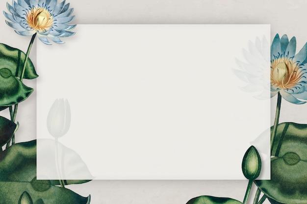 Vetor de quadro de nenúfares azuis em branco