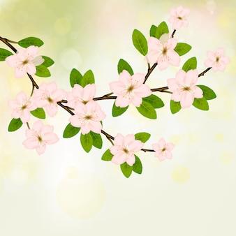 Vetor de ramo de florescência com flor de primavera rosa.