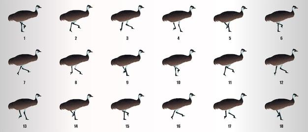 Vetor de sequência de animação de ciclo de execução do emu