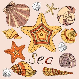 Vetor definido com conchas e estrelas do mar