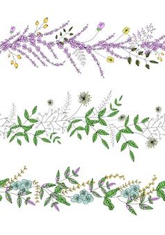 Vetor definido com pincéis de padrão de planta de jardim com lavanda estilizada