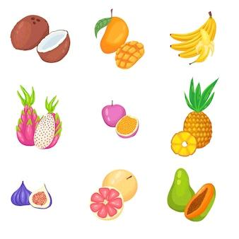 Vetor desenhado à mão e conjunto de frutas tropicais exóticas