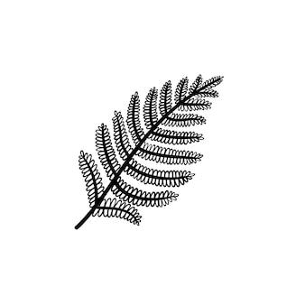Vetor desenhado à mão ícone de doodle de contorno de folha de samambaia. ilustração de esboço de folha de samambaia para impressão, web, mobile e infográficos isolados no fundo branco.