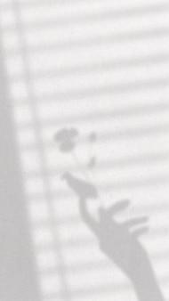 Vetor estético de fundo de papel de parede de telefone, sombra de mão com luz natural