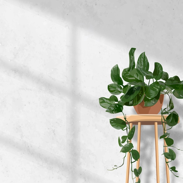 Vetor estético de fundo de planta de interior, parede branca de pothos suspensa com luz natural