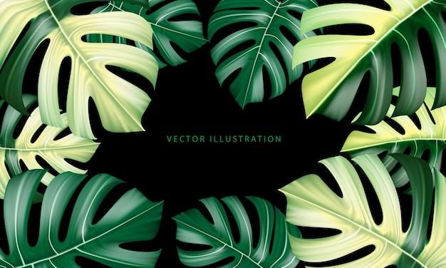 Vetor realista da folha da planta monstera deliciosa de florestas tropicais verde e amarelo em preto