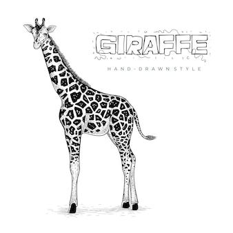 Vetor realista de girafa, ilustração animal desenhada à mão