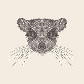 Vetor tirado mão da ilustração da cabeça do rato.