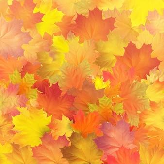 Vetor vermelho laranja marrom e amarelo folhas de outono
