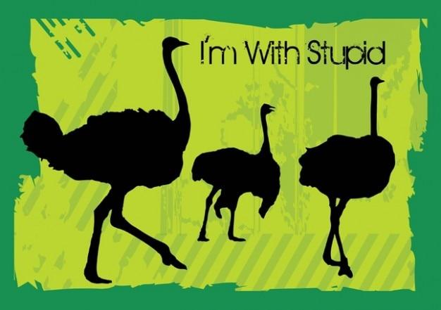 Vetores de avestruz