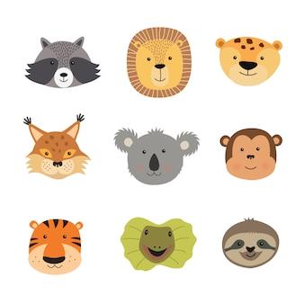 Vetorial, ilustração, de, animal, caras