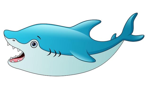 Vetorial, ilustração, de, cute, tubarão, caricatura