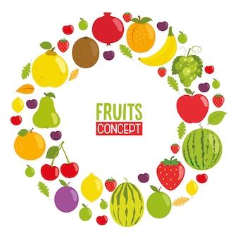 Vetorial, ilustração, de, frutas, conceito, desenho