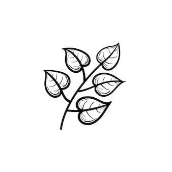 Vetorial mão desenhada folhas de tília no ícone de doodle de contorno de ramo. folhas de tília na ilustração do esboço do ramo para impressão, web, mobile e infográficos isolados no fundo branco.