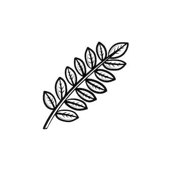 Vetorial mão desenhada folhas no ícone de doodle de contorno de ramo. folhas na ilustração do esboço do ramo para impressão, web, mobile e infográficos isolados no fundo branco.