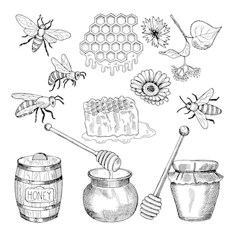 Vetorial, mão, desenhado, quadros, de, mel, produtos