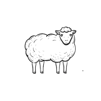 Vetorial mão extraídas ícone de doodle de contorno de ovelhas. ovelha esboçar ilustração para impressão, web, mobile e infográficos isolados no fundo branco.