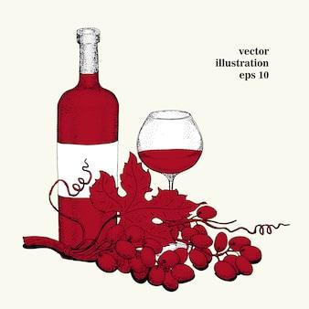 Vetorial, uva, ilustração
