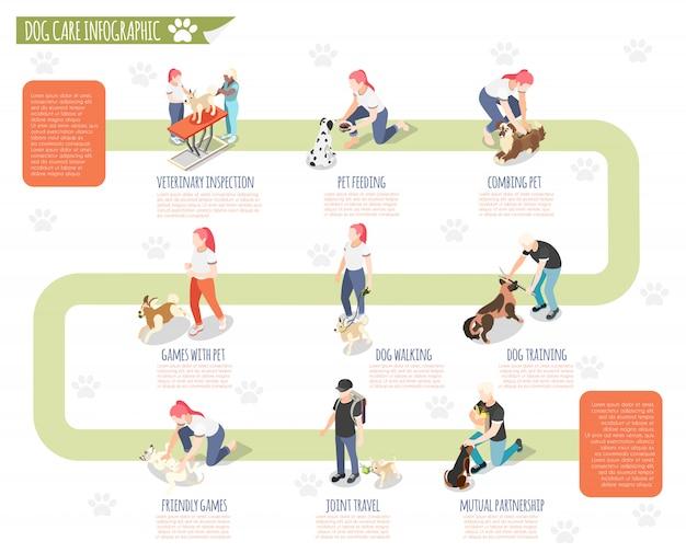 Vida comum do homem e seu cão isométrica infográfico com inspeção veterinária alimentação animal de estimação penteando o cão andando de treinamento de treinamento e outras descrições ilustração