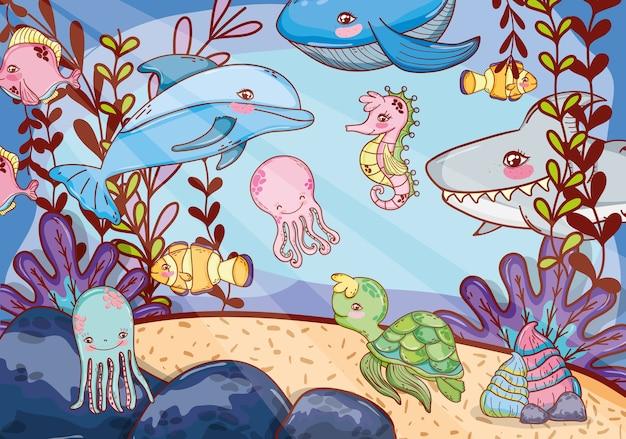 Vida marinha aquática