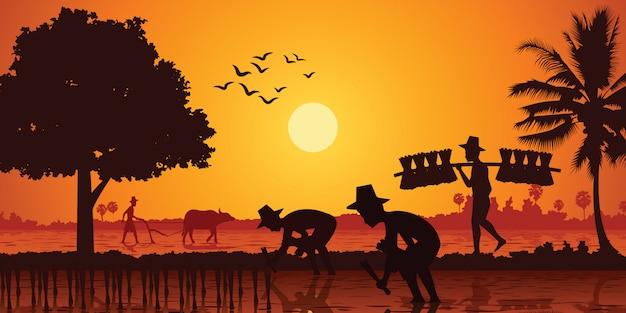Vida rural do arroz de planta de fazendeiro de ásia