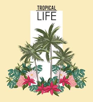Vida tropical e cartão de verão praia