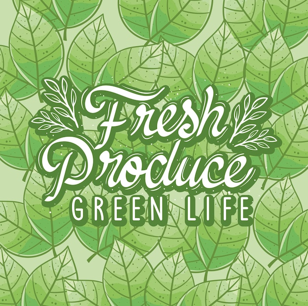 Vida verde de produtos frescos