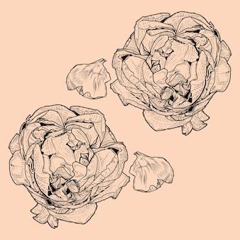 Vintage de flor rosa barroco