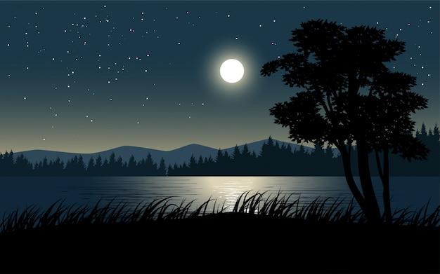 Visão noturna na beira do rio com lua e estrelas