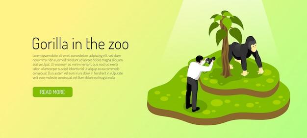 Visitante ao zoológico durante a fotografia de gorila no banner horizontal verde amarelo isométrico