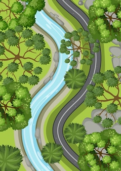 Vista aérea com longa estrada e rio através da paisagem da floresta