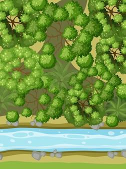 Vista aérea com rio através da paisagem florestal