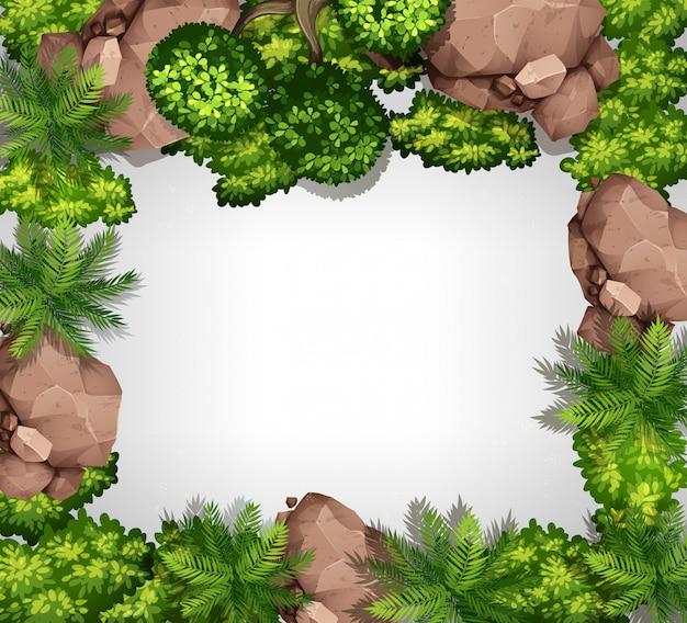 Vista aérea, de, jardim, borda