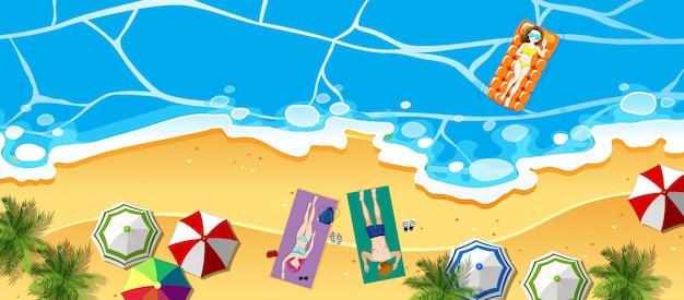 Vista aérea, de, praia, ilustração