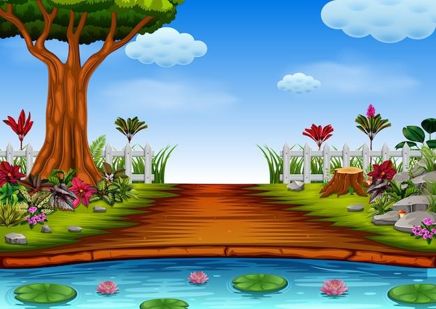 Vista da floresta com o lago