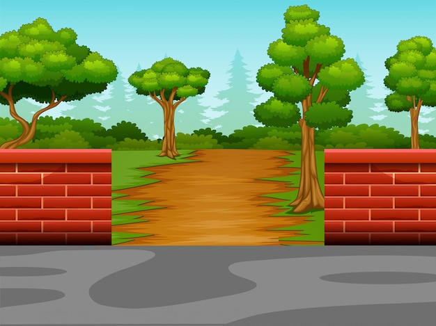 Vista, de, a, estrada sujeira, para, a, floresta