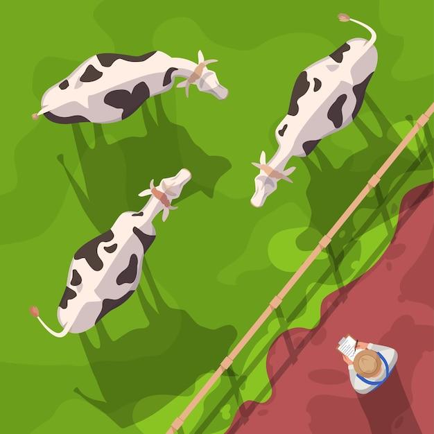 Vista superior da ilustração do vetor semi plana de gado. animais domésticos no campo da fazenda. trabalhador de fazenda verifica vacas. agronegócio e agricultura. fazendeiro personagem de desenho animado 2d para uso comercial