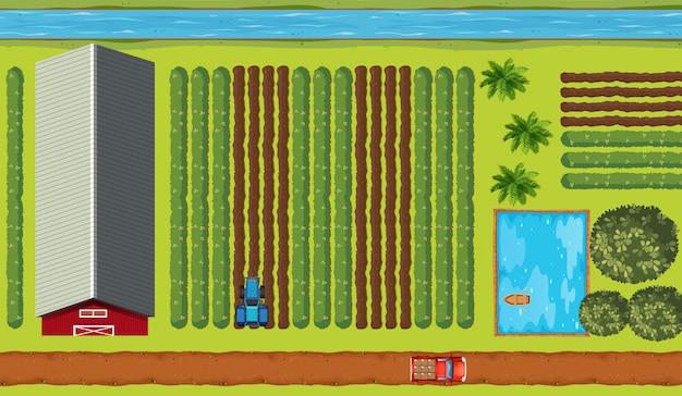 Vista superior de terras agrícolas com culturas