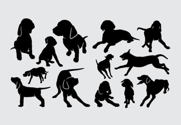 Vizsla dog pet mamífero animais silueta