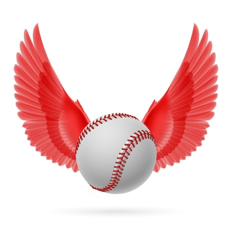Vôo de beisebol