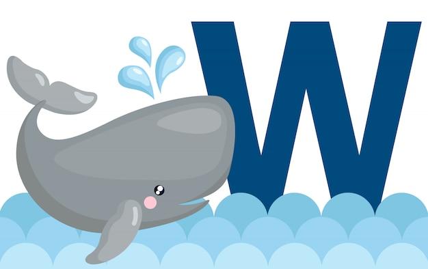 W para baleia