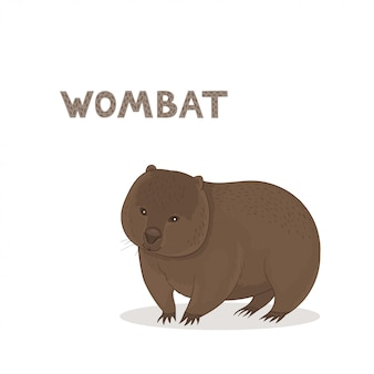Wombat dos desenhos animados, isolado em um fundo branco