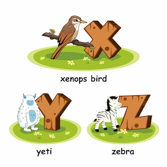 Zebra yeti xenops pássaro alfabeto madeira animais